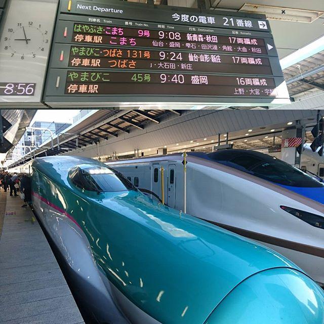 久々に東北新幹線